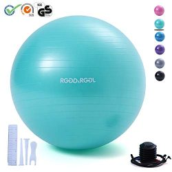 RGGD&RGGL Exercise Ball (18-34in),Professional Yoga Stability Ball Chair Extra Thick Anti-Bu ...
