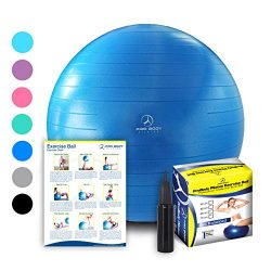 ProBody Pilates Exercise Ball, 65cm Dia – Blue
