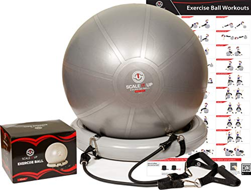 Scale It Up 65cm Exercise Ball Chair Set with 15LB Resistance Bands Set – Yoga Ball, Fitne ...
