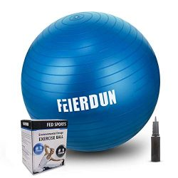 FEIERDUN Fitness Health Exercise Ball, Heavy Duty Birthing Ball Anti-Burst/Slip Yoga Ball with Q ...