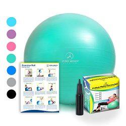 Exercise Ball – Professional Grade Anti-Burst Fitness, Balance Ball for Pilates, Yoga, Bir ...