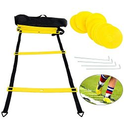 Yaegoo Premium Agility Ladder and Cones – 10 Field Cones – 12 Rung Speed Ladder R ...