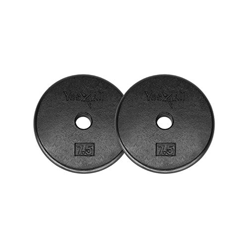 Yes4All 1-inch Cast Iron Weight Plates for Dumbbells – Standard Weight Disc Plates (7.5 lb ...