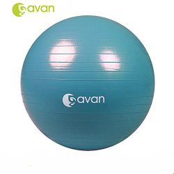 GAVAN 65cm Exercise Ball, for Fitness, Stability, Balance & Yoga – 2000LBS Anti Burst  ...