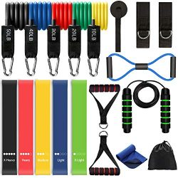 LUYATA Resistance Bands, 19pcs Workout Bands Resistance Bands Set with 5 Stackable Exercise Band ...