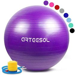 arteesol Exercise Yoga Ball, Gym Ball with Quick Pump 75cm/65cm/55cm/45cm Anti-Slip Exercise Bal ...