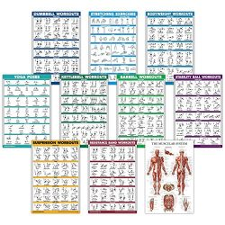 10 Pack – Exercise Workout Poster Set – Dumbbell, Suspension, Kettlebell, Resistance ...