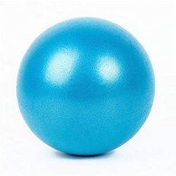 HLH-Fitness Equipment Durable Mini Exercise Ball-9 Inch Small Ball for Stability, Barre, Pilates ...