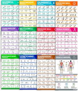 [12-PACK] Laminated Workout Poster Set – Perfect Large Size Workout Posters For Home Gym & ...