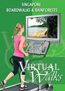 Treadmill Video Singapore Boardwalks for indoor walking, treadmill and cycling workouts