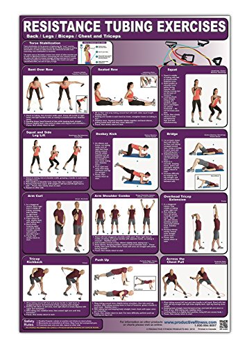 Resistance Tubing Exercises Poster/Chart -Back/Legs/Biceps/Chest & Triceps Laminated; – ...
