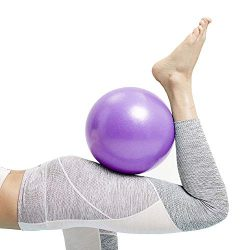 Mini Exercise Barre Ball, Gymnic Over Ball, Pilates Soft Ball for Core Training and Physical The ...