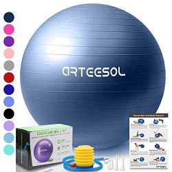 arteesol Exercise Yoga Ball, Extra Thick Stability Balance Ball (45-75cm), Professional Grade An ...