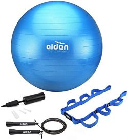 OLIVIA & AIDEN Exercise Ball Set – 65cm Anti-Burst Balance Ball for Yoga, Pilates, Bir ...