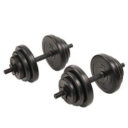Sunny Health & Fitness Exercise Vinyl 40 Lb Dumbbell Set Hand Weights for Strength Training, ...
