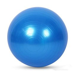 Exercise Ball for Yoga, Fitness, Balance Stability, Extra Thick Professional Grade Balance & ...