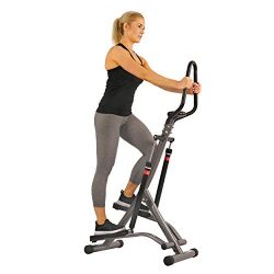Sunny Health & Fitness Stair Stepper Exercise Equipment Step Machine for Exercise – SF ...