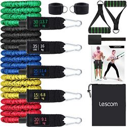 Resistance Bands Set (11pcs), Exercise Bands with Handles, Door Anchor, Heavy Duty Protective Ny ...