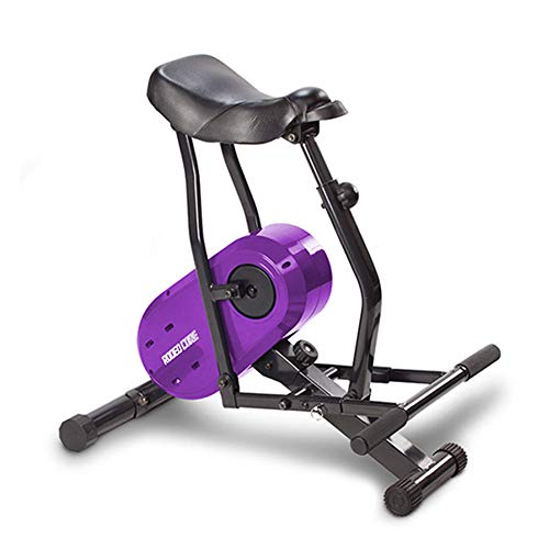 Daiwa Felicity Rodeo Core Compact Core Trainer Ab Workout Equipment for Leg Thighs Buttocks Calv ...