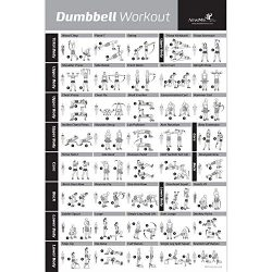 Dumbbell Workout Exercise Poster – NOW LAMINATED – Strength Training Chart – B ...