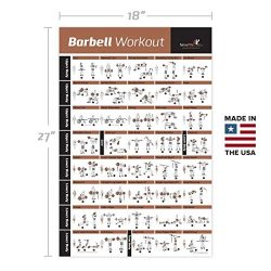 BARBELL WORKOUT EXERCISE POSTER LAMINATED – Home Gym Weight Lifting Chart – Build Mu ...