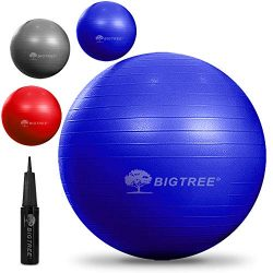 Bigtree Exercise Ball Extra Thick Yoga Ball Chair, Anti-Burst Heavy Duty Stability Ball, Birthin ...